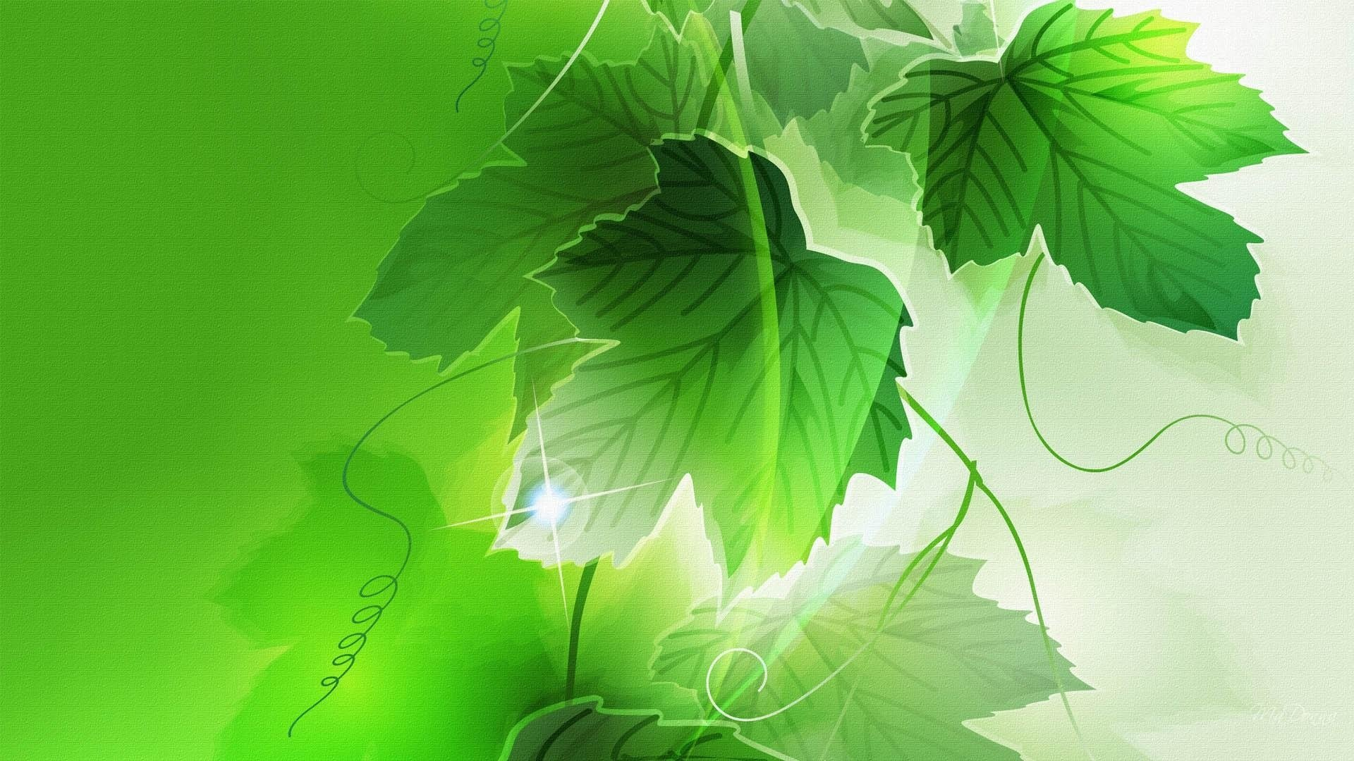 Wallpapers ID:607018