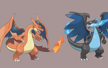 4 Mega Charizard Y Pokemon HD Wallpapers