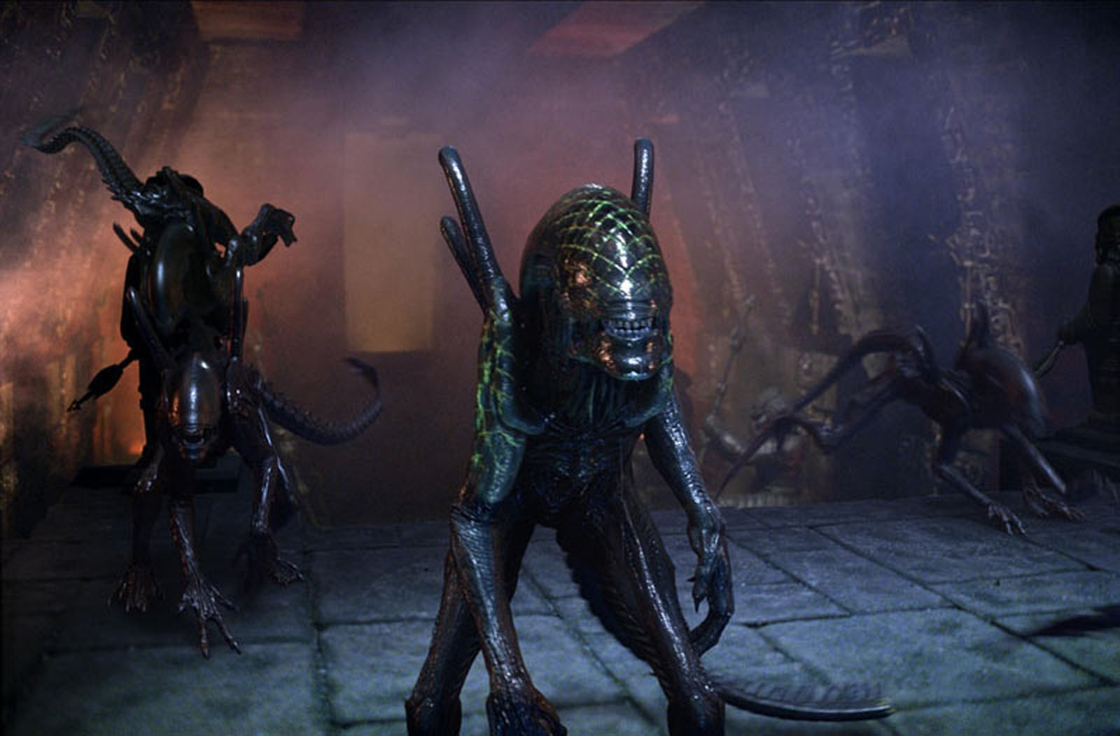 avp: alien vs. predator wallpaper and background image | 1600x1052