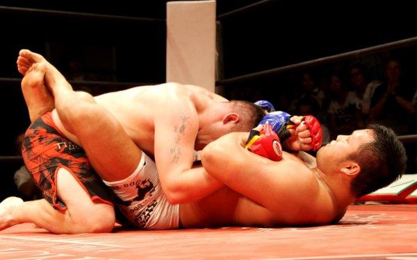Sports Mixed Martial Arts HD Wallpaper | Background Image