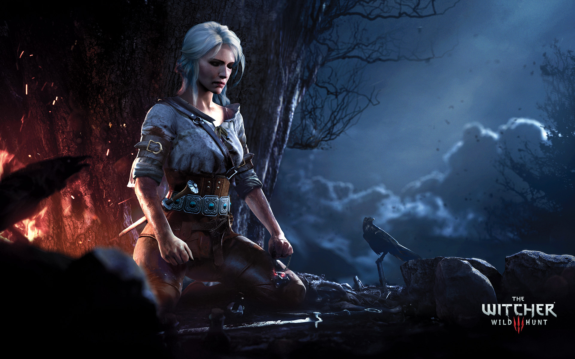 The Witcher 3 Wild Hunt Hd Wallpaper Background Image