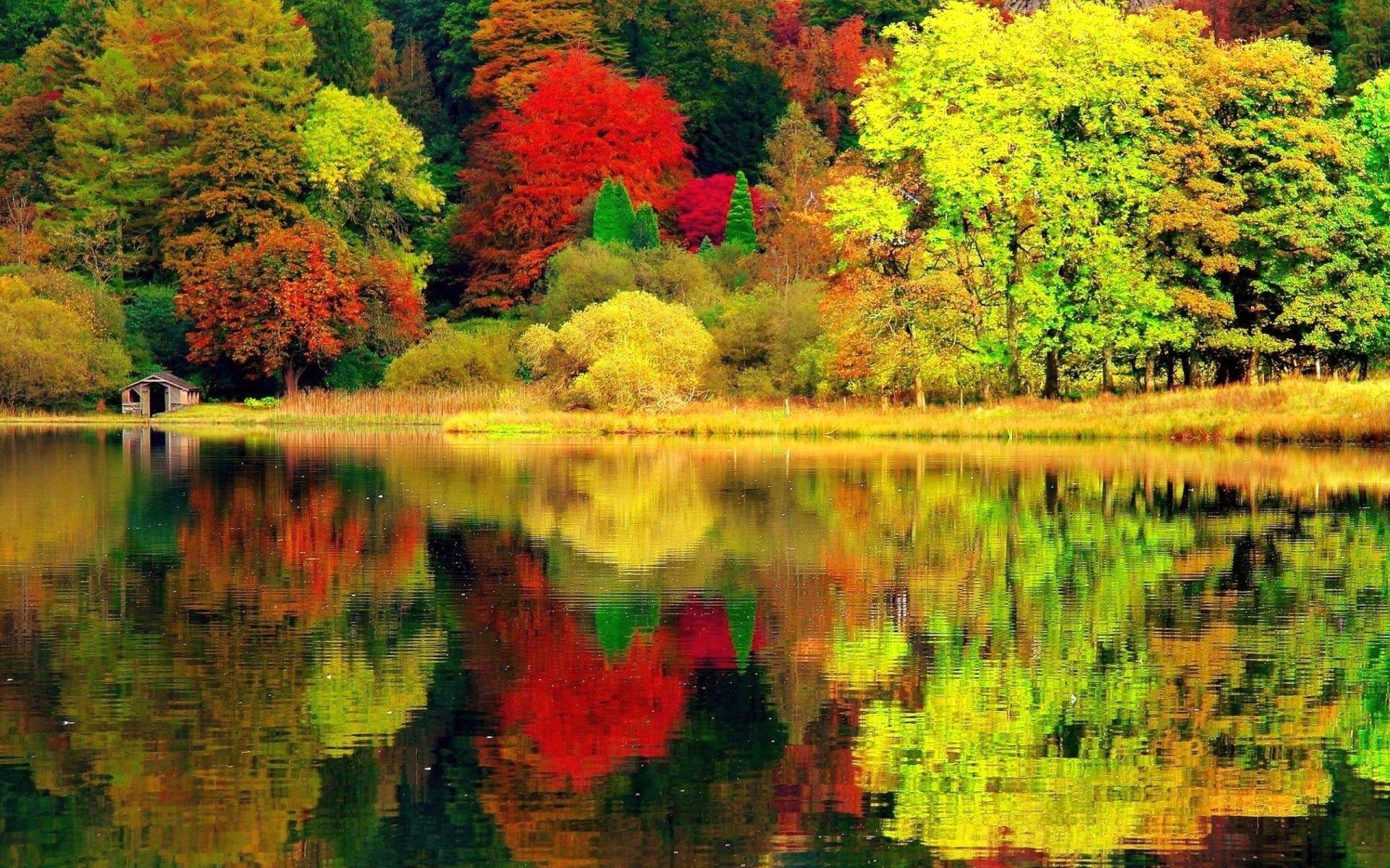 autumn lake HD Wallpaper | Background Image | 2560x1600 ...