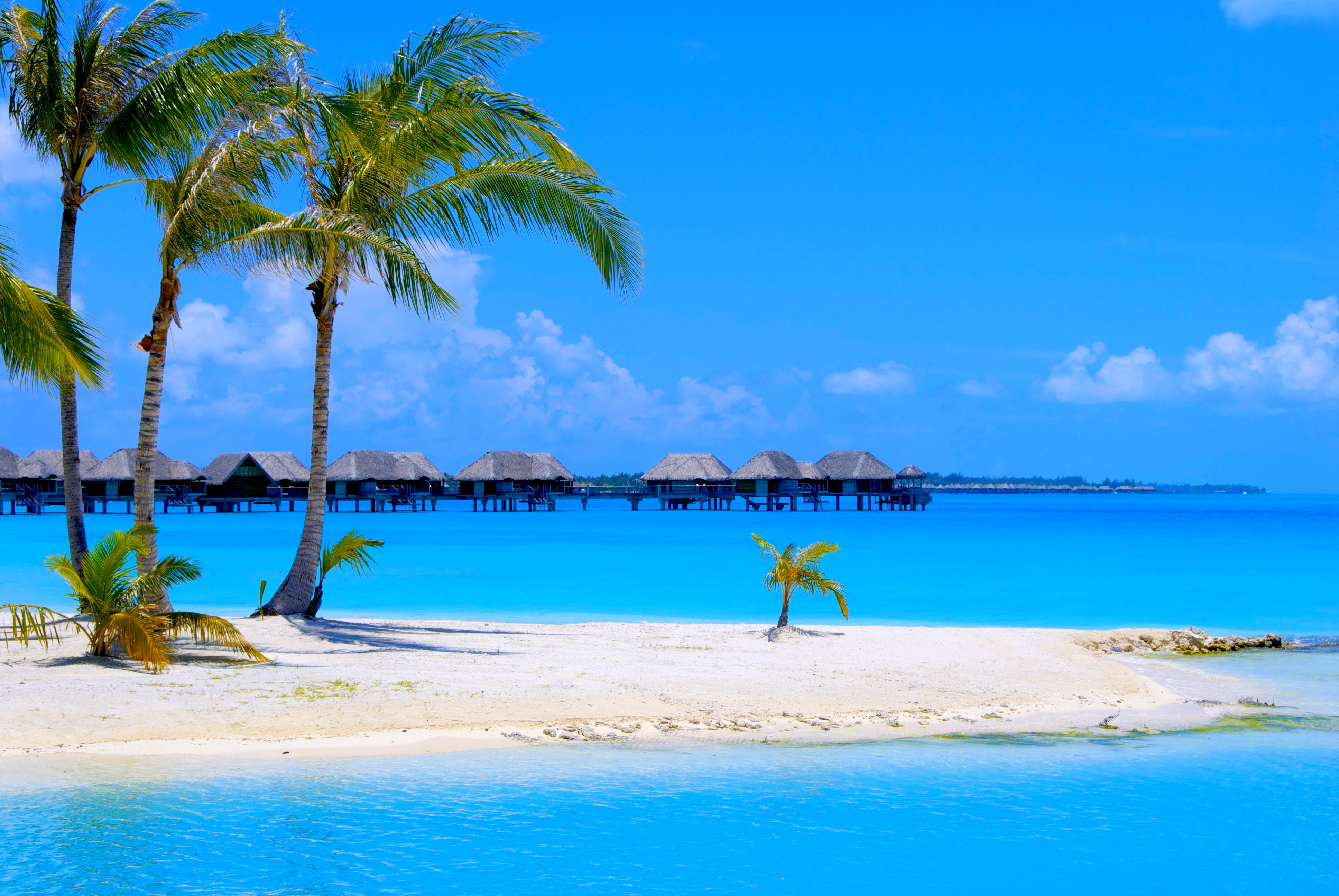 tropical resorts wallpaper background - photo #29