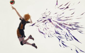 213 Haikyu Hd Wallpapers Background Images Wallpaper Abyss