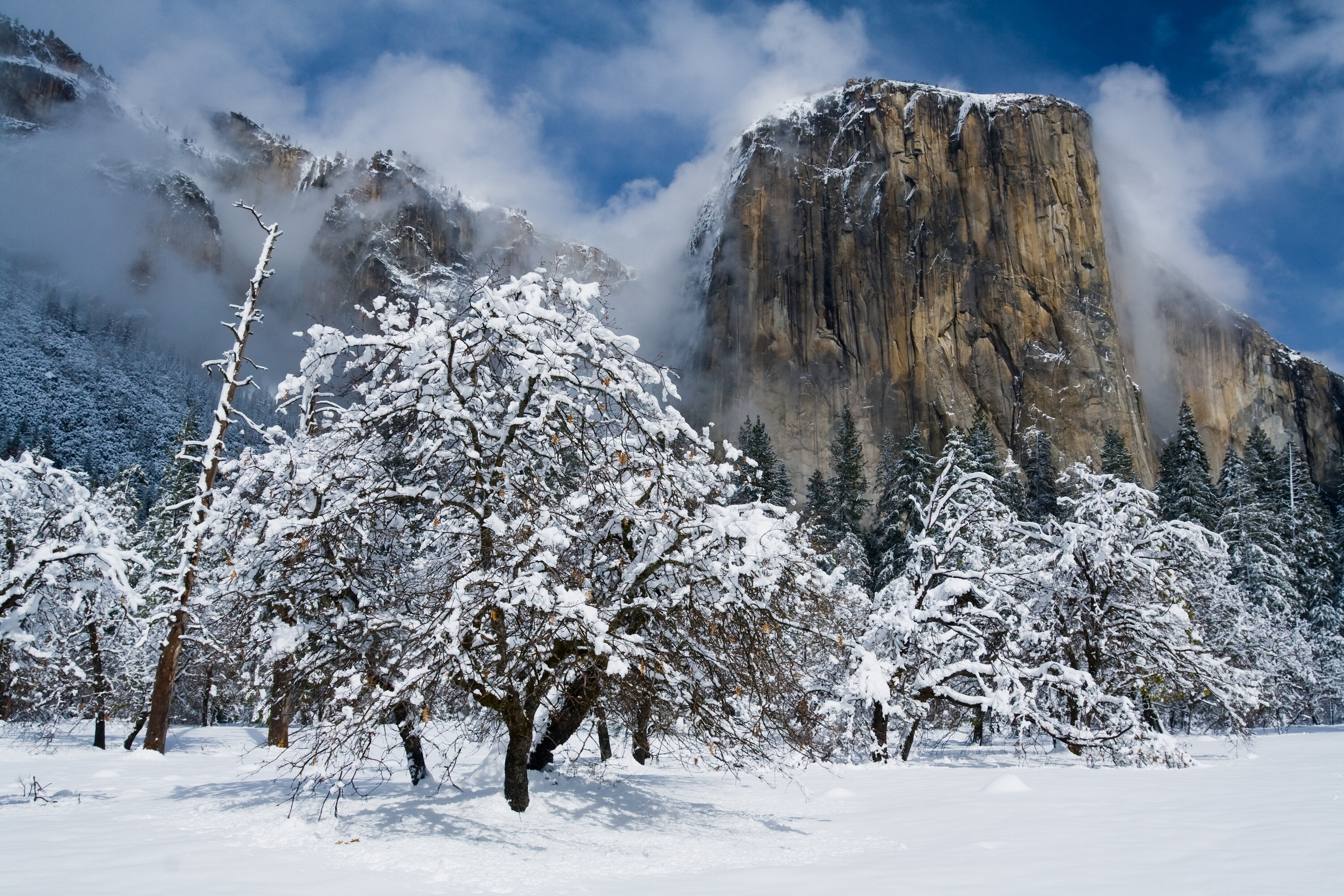 Hd wallpaper yosemite - Hd Wallpaper Background Id 676517