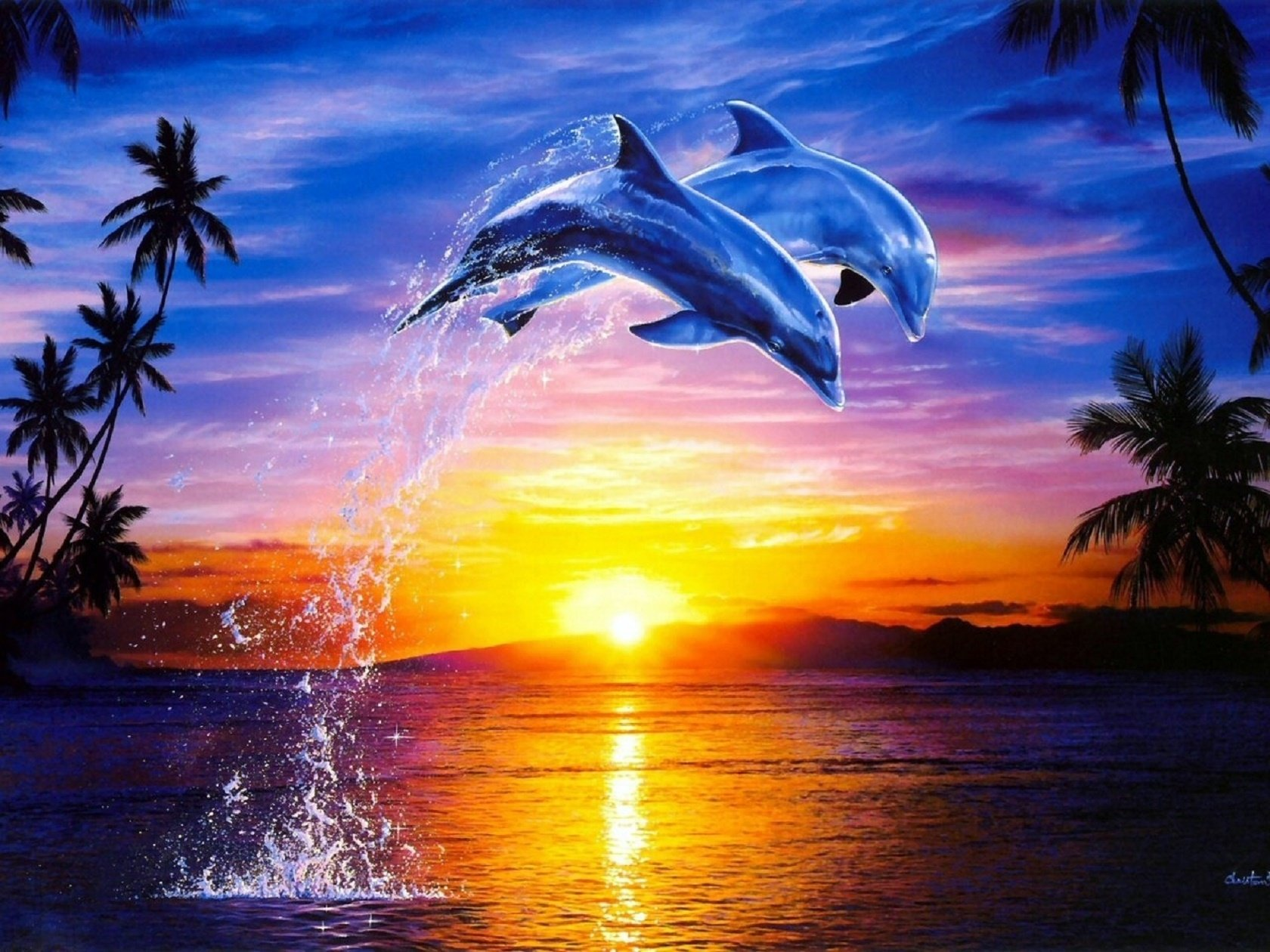 Wallpapers ID:679673