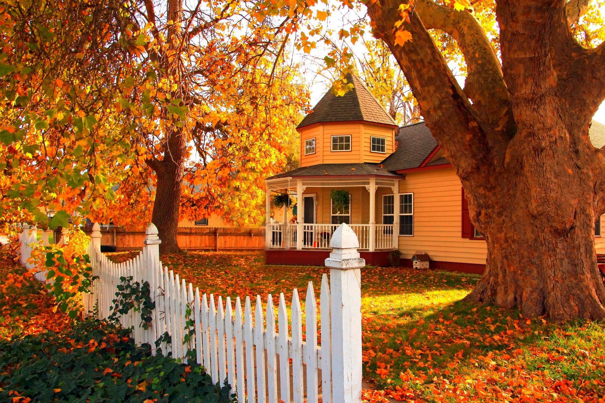 Pretty House In Autumn Full HD Wallpaper And Background Image