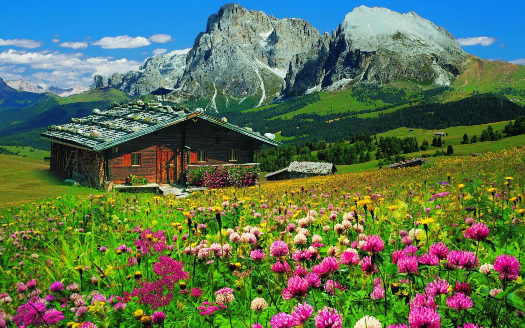 House and wildflowers in the mountains wallpaper and for House photos hd