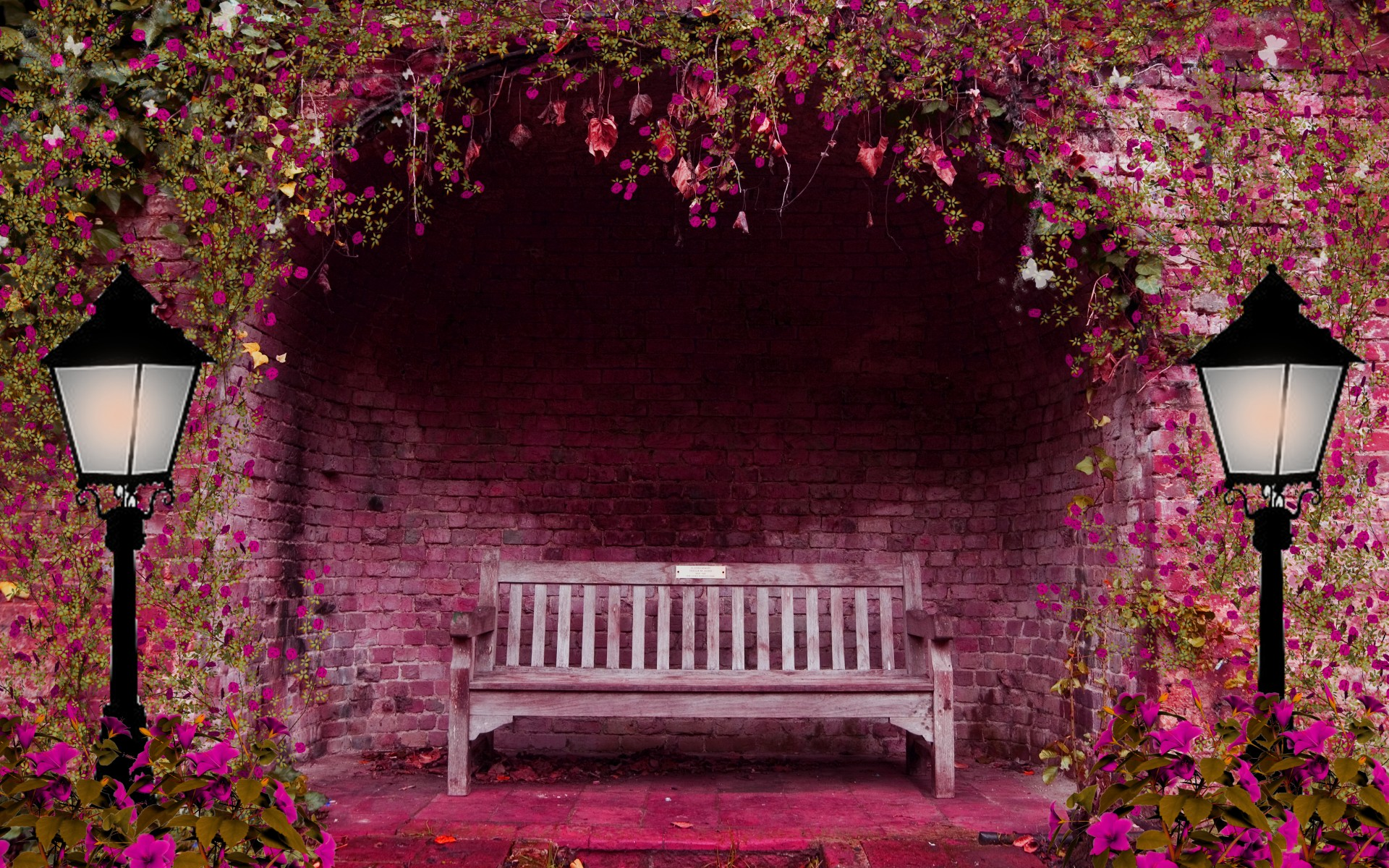 Bench And Pink Flowers Full HD Wallpaper And Background - Colorful flower garden background