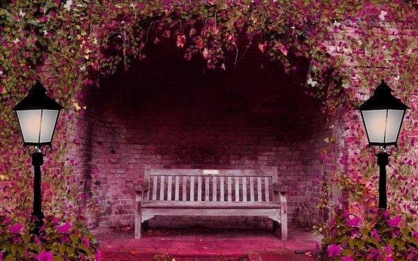 Artístico Bench Flor Alumbrado público Pink Flower Fantasía Jardín Hoja Verde Street Light Fondo de pantalla HD | Fondo de Escritorio