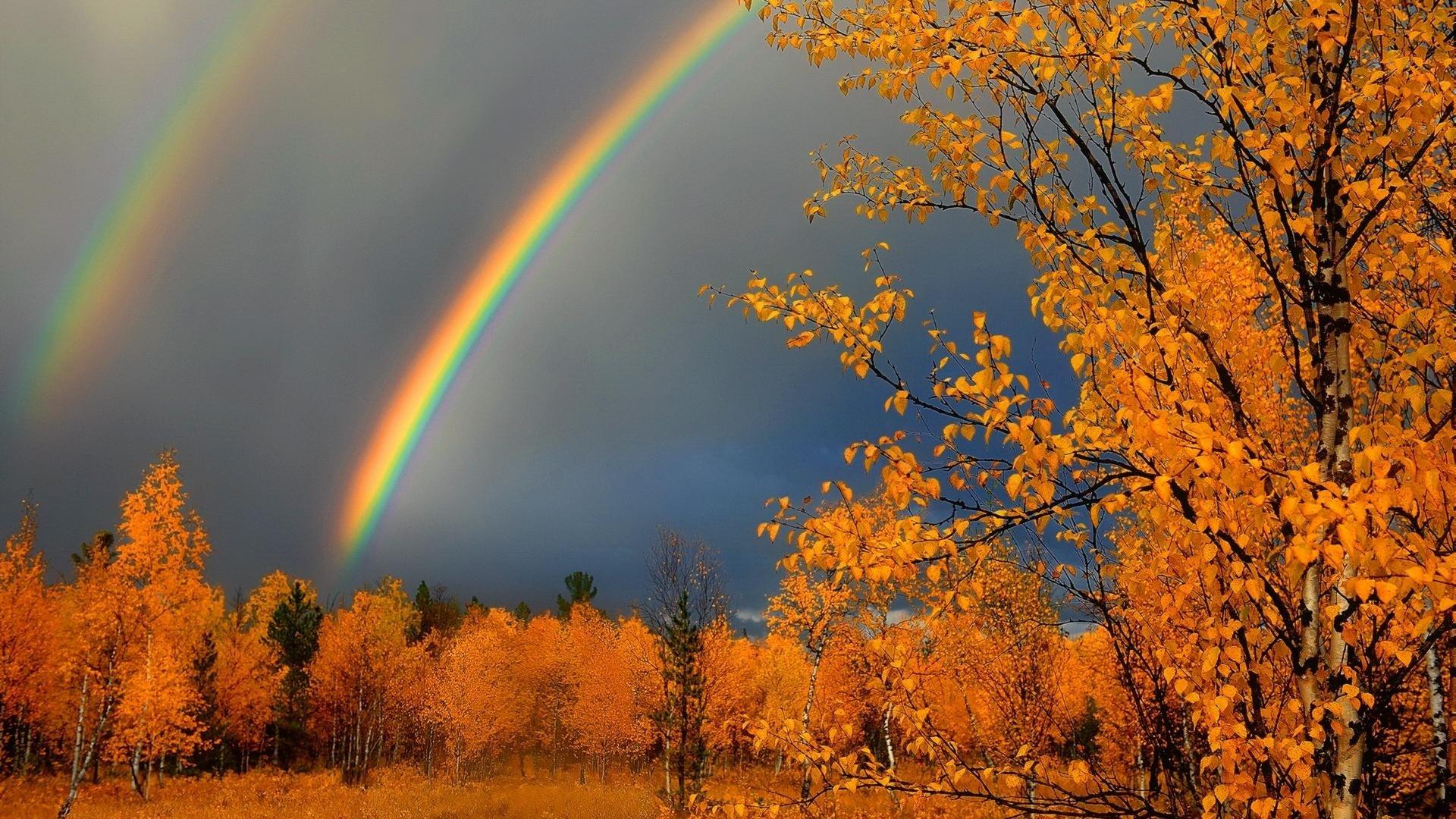 Дождь Потрясающие и просто красивые фотографии