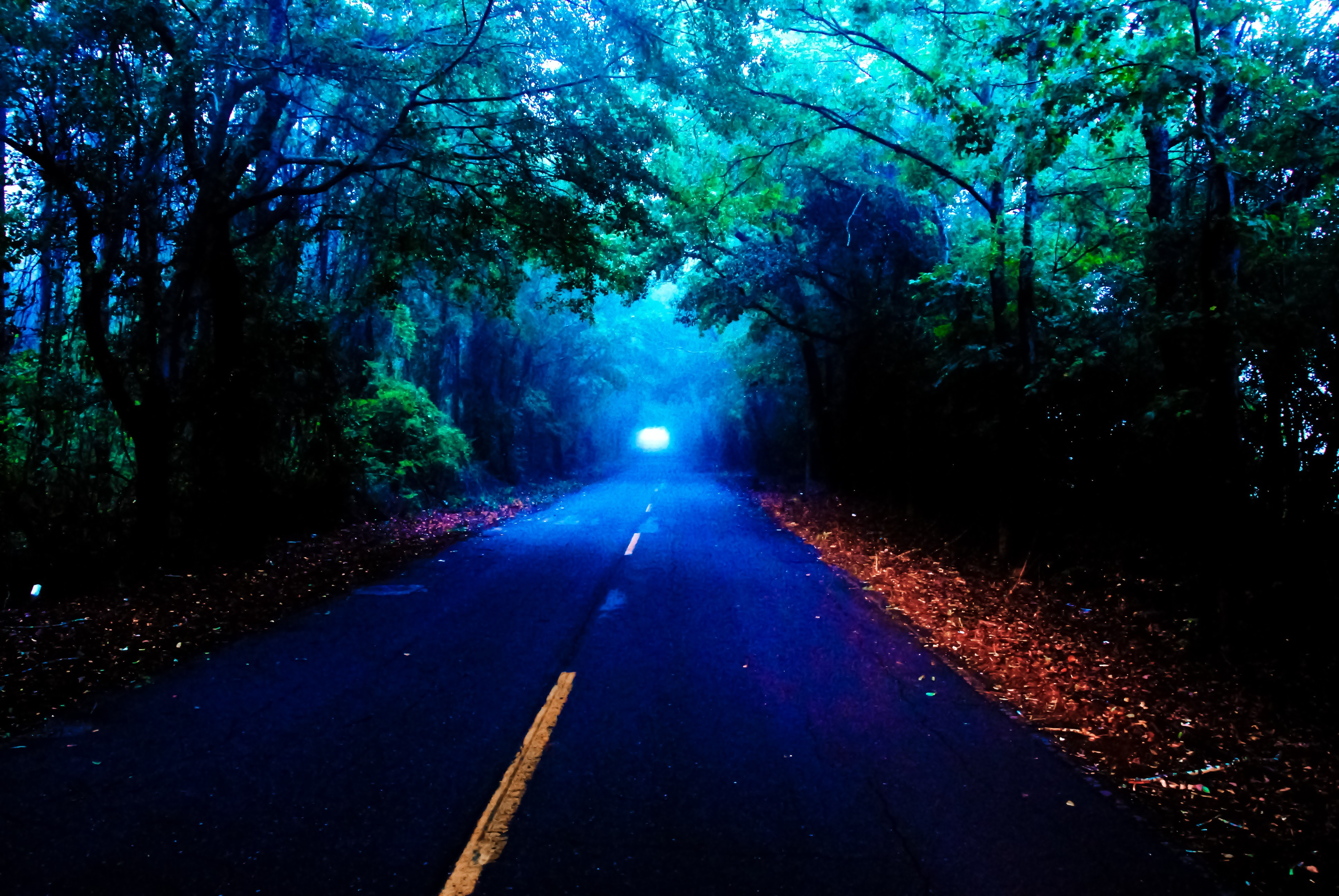 Foggy Road On Autumn Night 4k Ultra Hd Wallpaper Background Image 3872x2592 Id 687594 Wallpaper Abyss