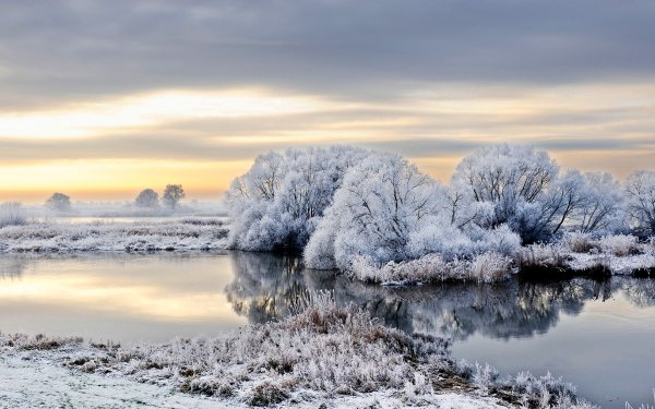 Earth River Germany Tree Winter Snow Frost Nature Reflection Sky Landscape HD Wallpaper | Background Image