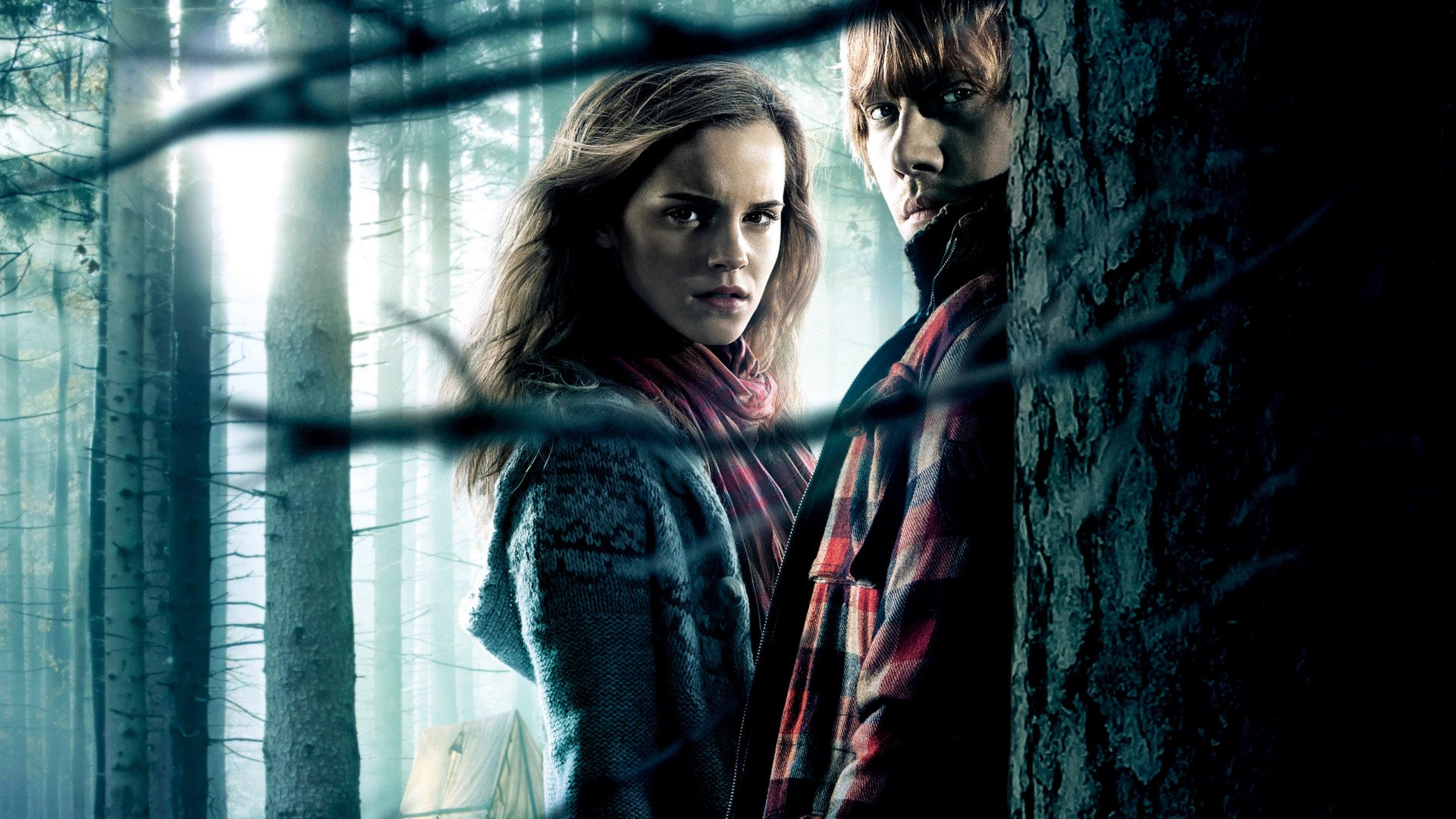Harry Potter And The Deathly Hallows: Part 1 HD Wallpaper