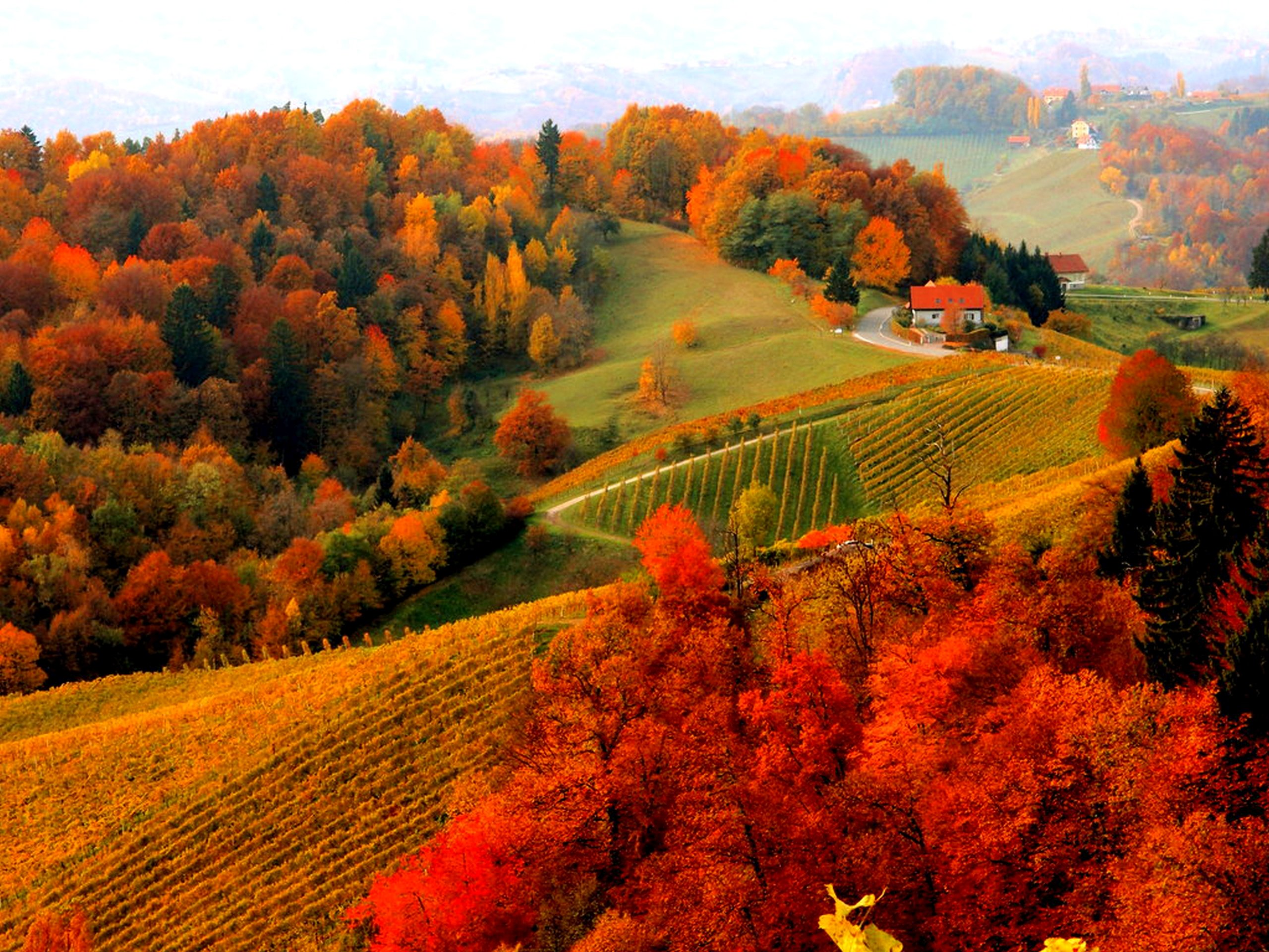 autumn mountains backgrounds.  Autumn Wallpapers ID692063 Intended Autumn Mountains Backgrounds L