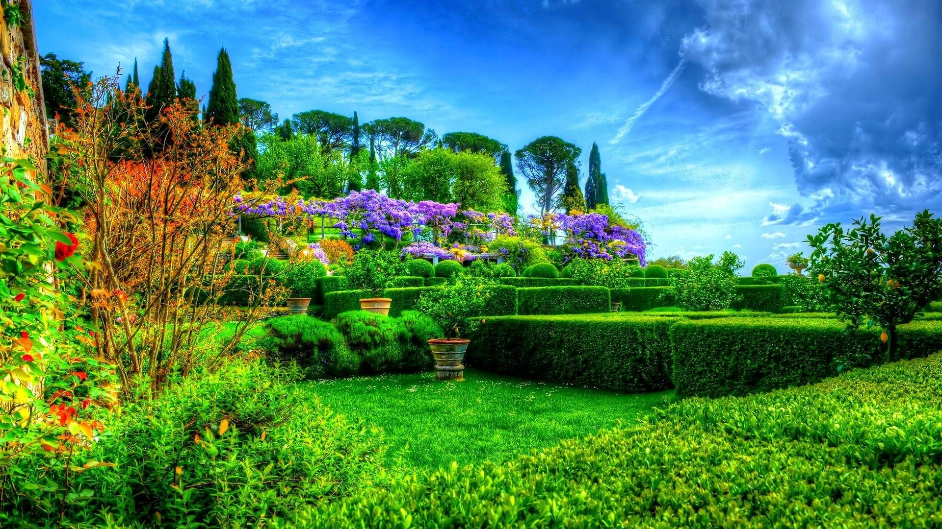 Earth - Spring  Garden Earth Park Green Tree Bush Grass HDR Wallpaper