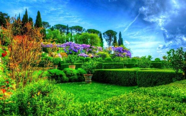 Earth Spring Park Green Tree Bush Grass HDR Garden HD Wallpaper | Background Image