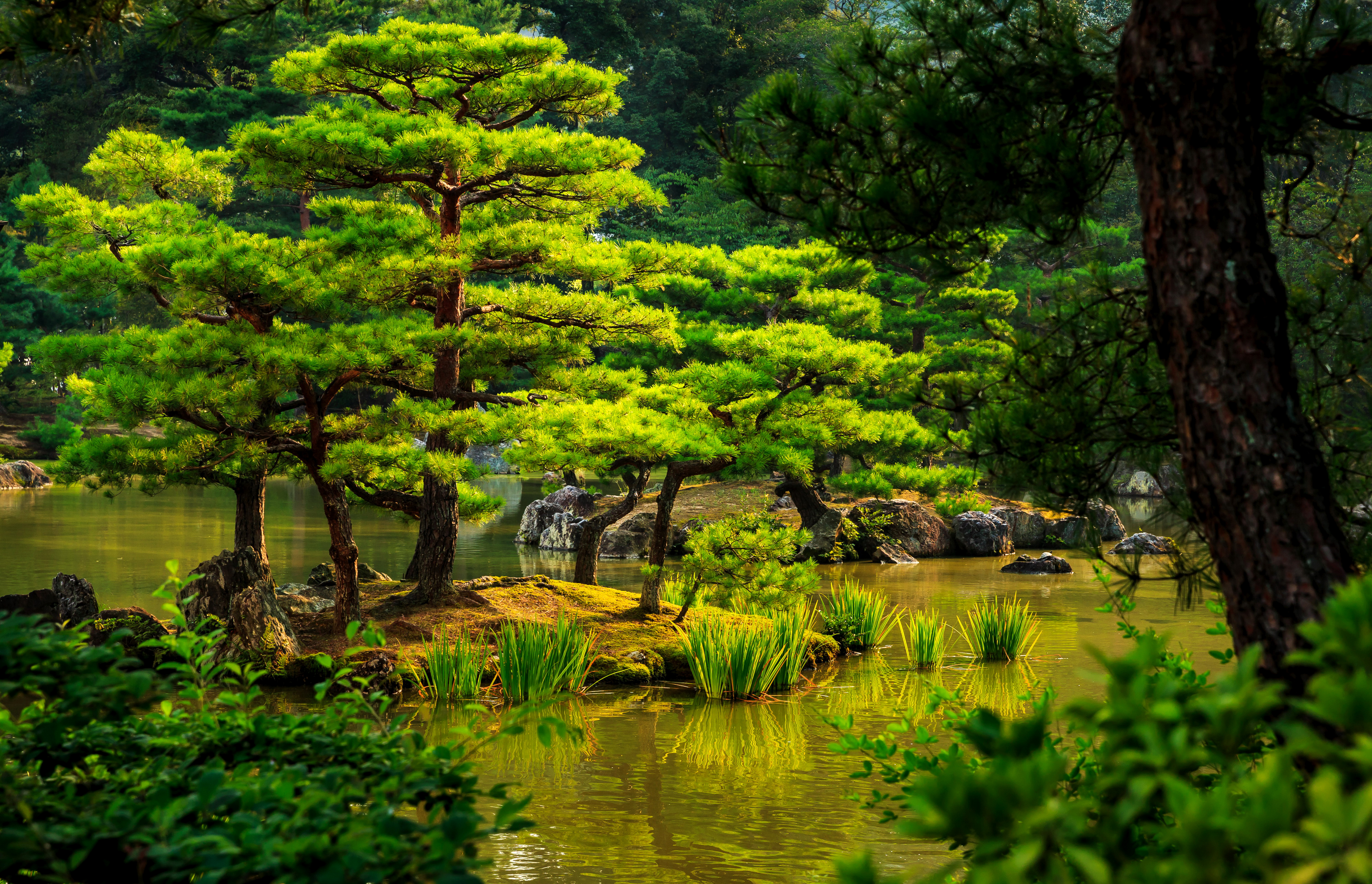 Japanese Garden Wallpapers: Japanese Garden 4k Ultra HD Wallpaper