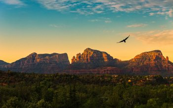 97 Arizona Hd Wallpapers Background Images Wallpaper Abyss