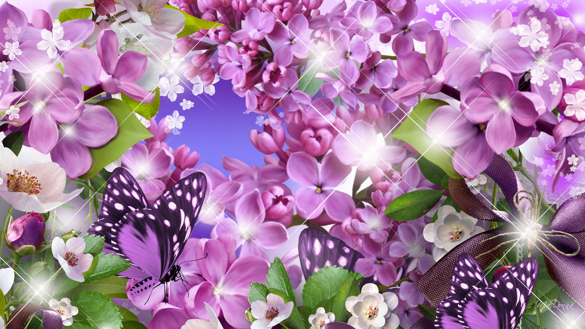 Lilacs cosmos and butterflies full hd wallpaper and for Lilac butterfly wallpaper