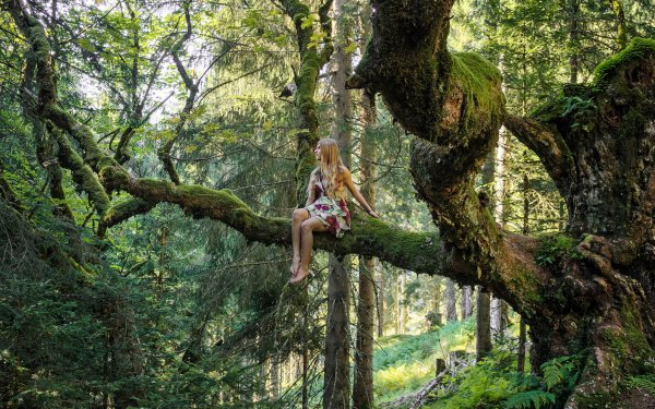 Mujeres Estado de ánimo Bosque Árbol Rama Rubia Outdoor Fondo de pantalla HD | Fondo de Escritorio