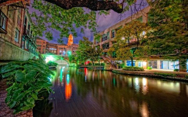 Man Made San Antonio Cities United States Texas Night Tree Building Light HD Wallpaper   Background Image