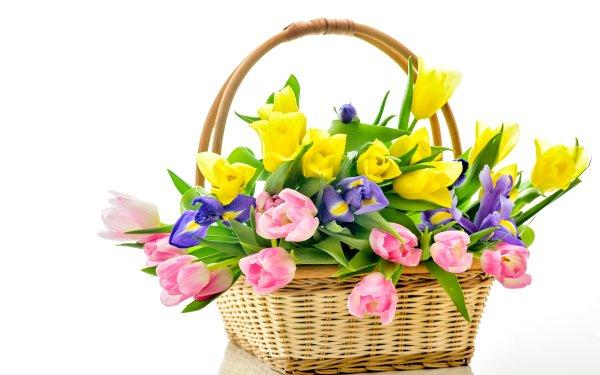 Man Made Flower Tulip Iris Basket Yellow Flower Purple Flower Pink Flower HD Wallpaper   Background Image