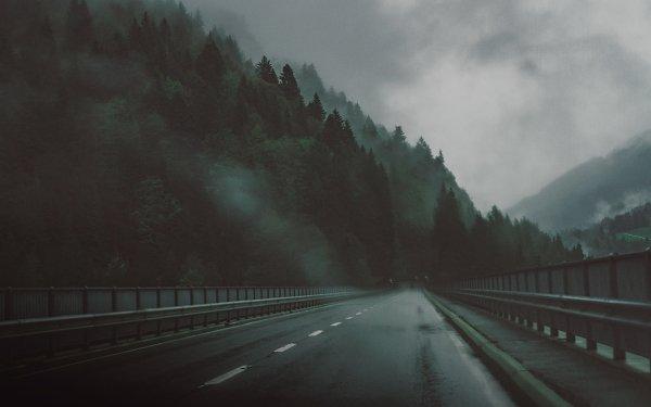 Man Made Road Highway Tree Fog HD Wallpaper | Background Image