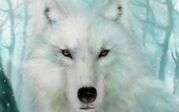 Fantasy Wolf Fantasy Animals Painting White Wolf Winter HD Wallpaper   Background Image