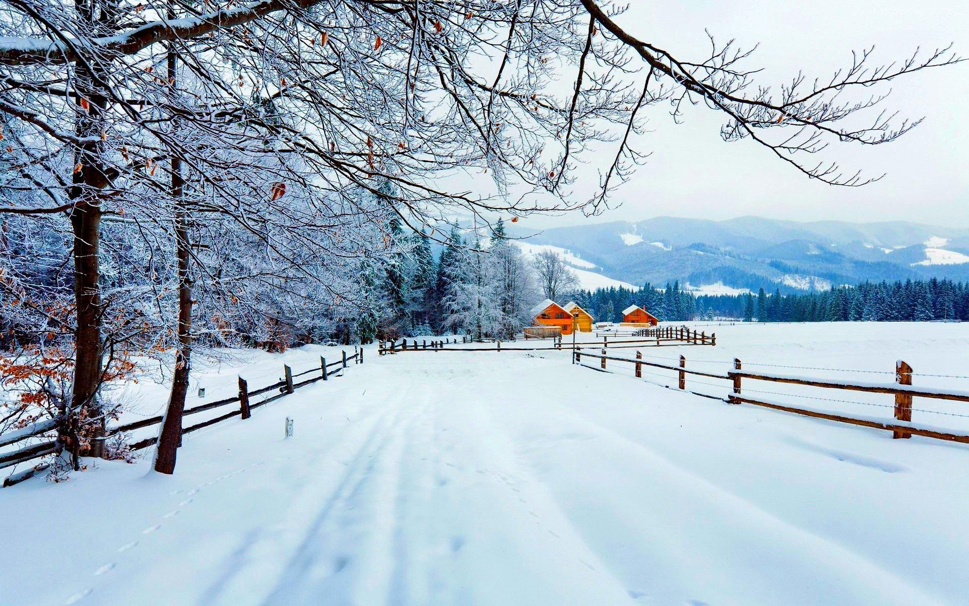 Rural Winter Road HD Wallpaper