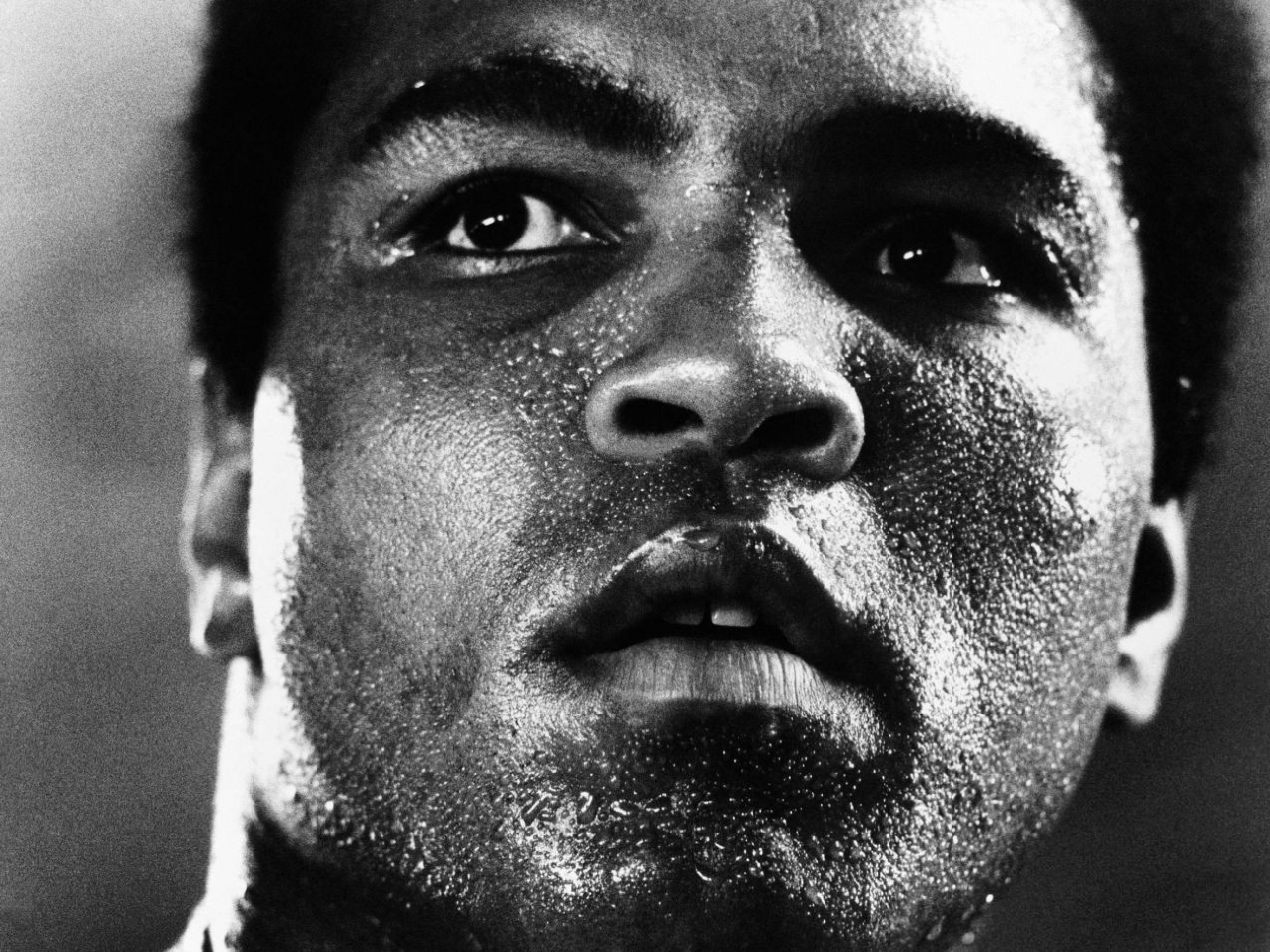 9 Muhammad Ali Hd Wallpapers Background Images Wallpaper