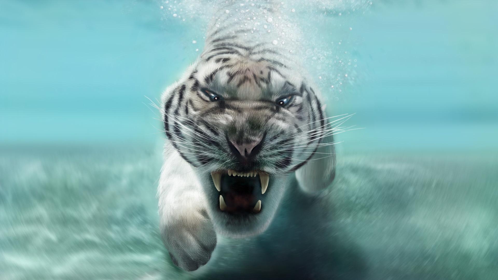 White Tiger Swimming Under Water HD Wallpaper