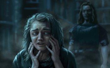 198 Arya Stark Hd Wallpapers Hintergründe Wallpaper Abyss