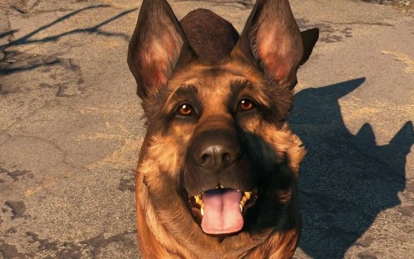 Video Game Fallout 4 Fallout Dogmeat HD Wallpaper | Background Image
