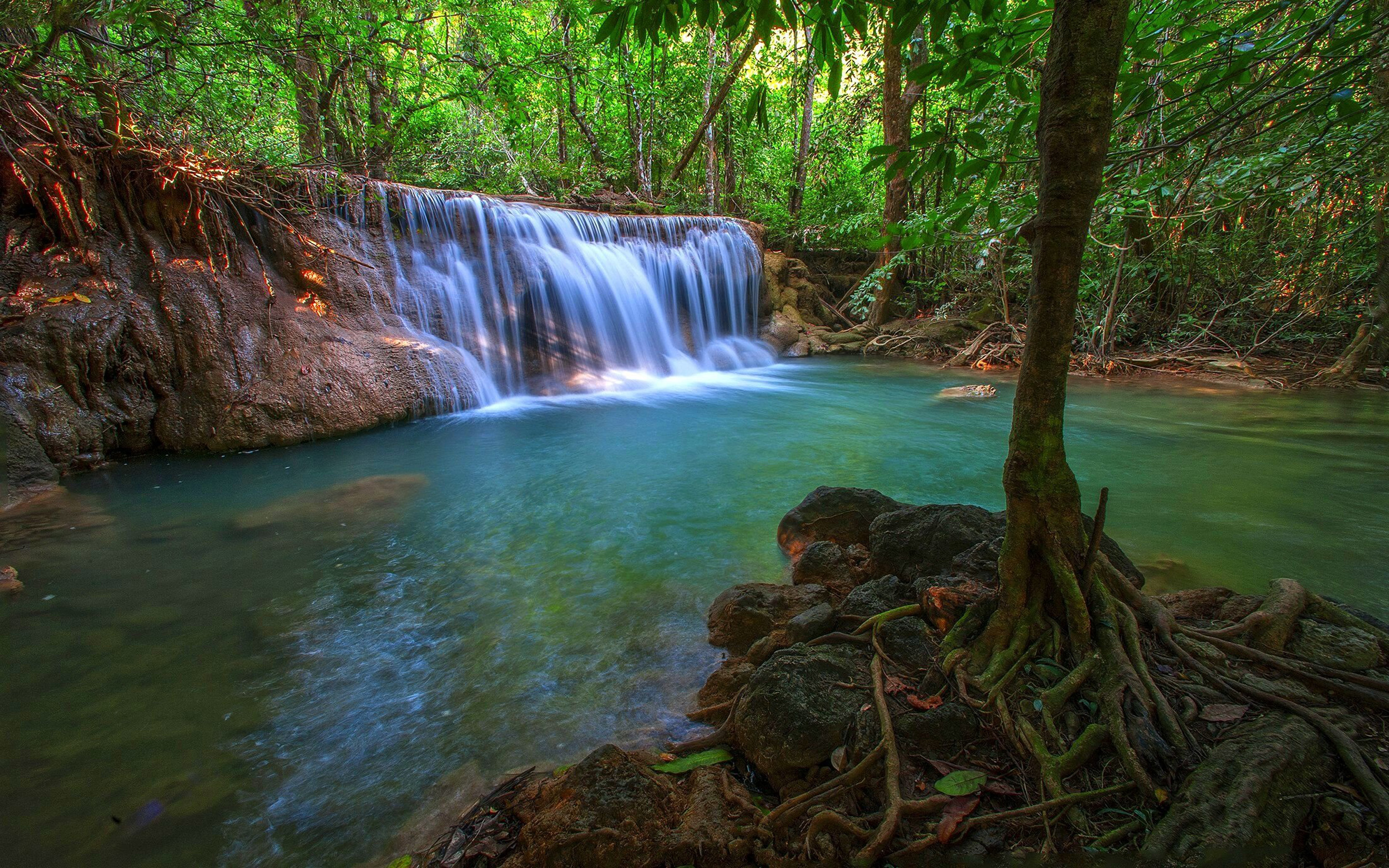 Tropical Waterfall HD Wallpaper
