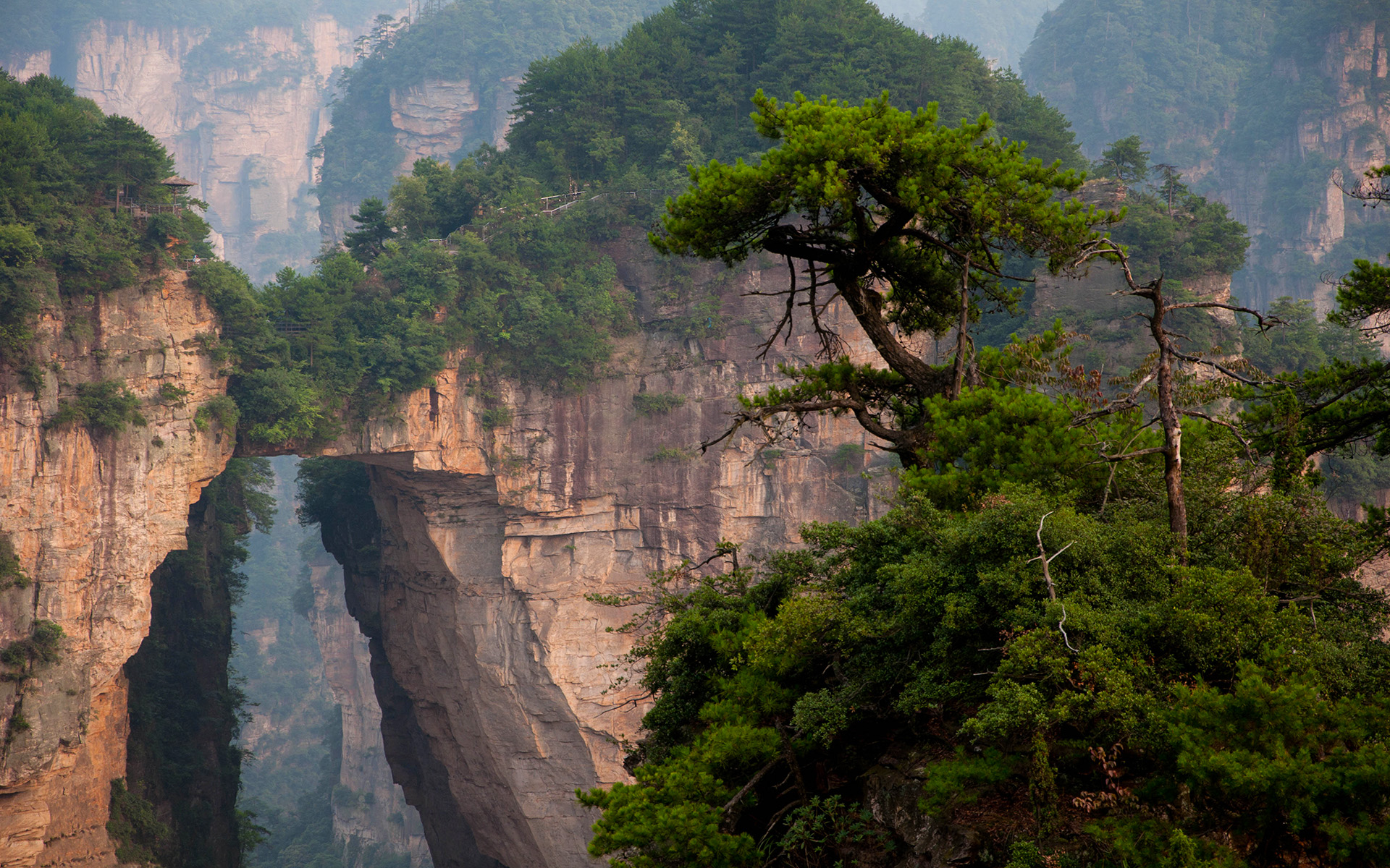 zhangjiajie national park in china hd wallpaper | background image