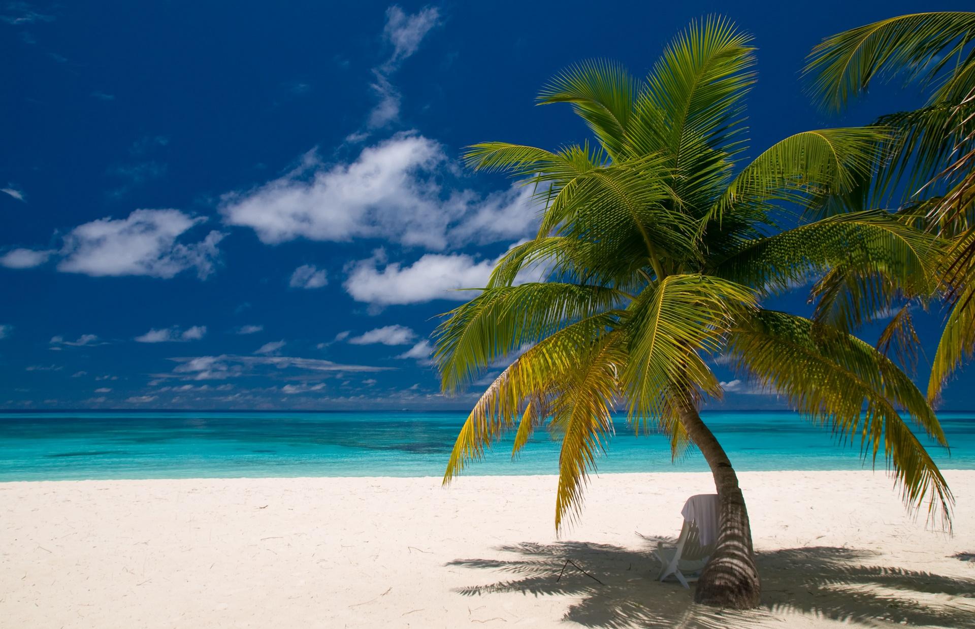 Beach HD Wallpaper | Background Image | 1920x1239 | ID