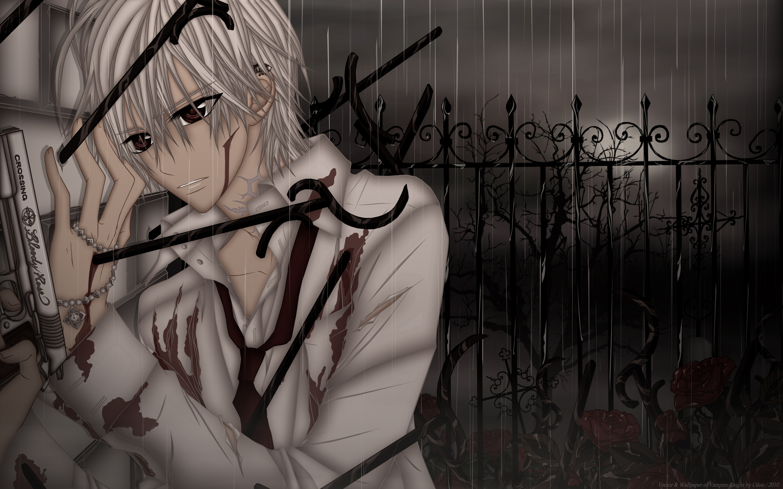 Vampire Knight Full HD Wallpaper and Background Image ...