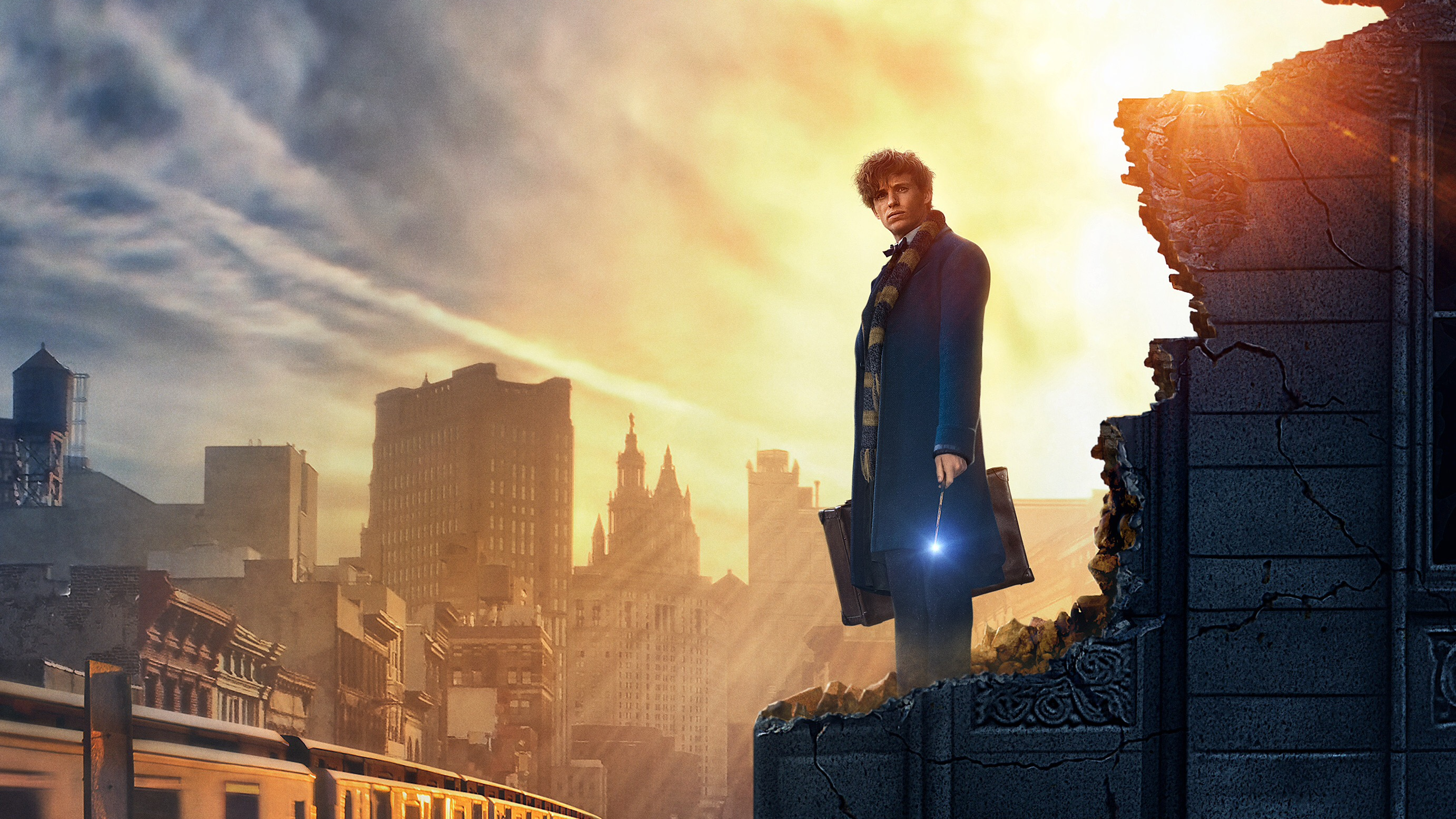 fantastic beasts and where to find them hd wallpaper | background
