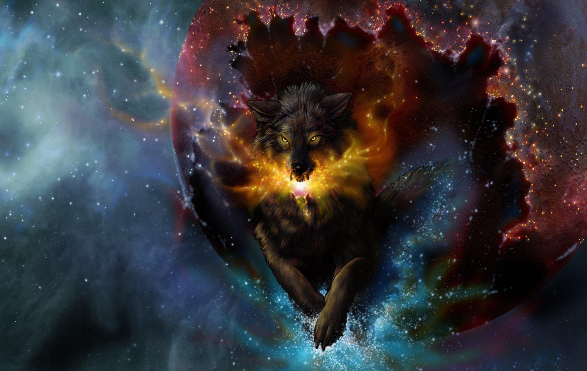 Animales Fondos De Escritorio Hd: Lobo Fondo De Pantalla HD