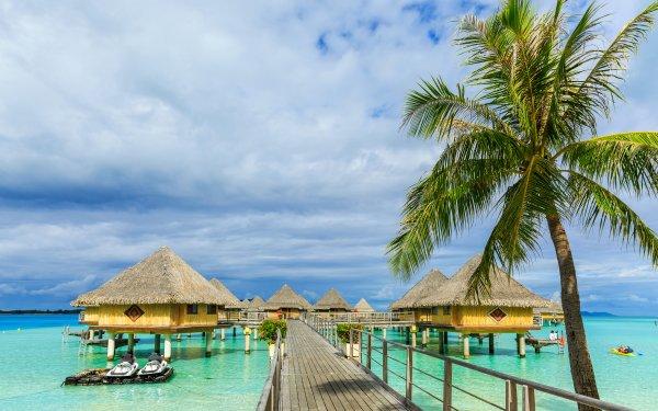 Photography Holiday French Polynesia Bora Bora Tropics Palm Tree Bungalow HD Wallpaper | Background Image