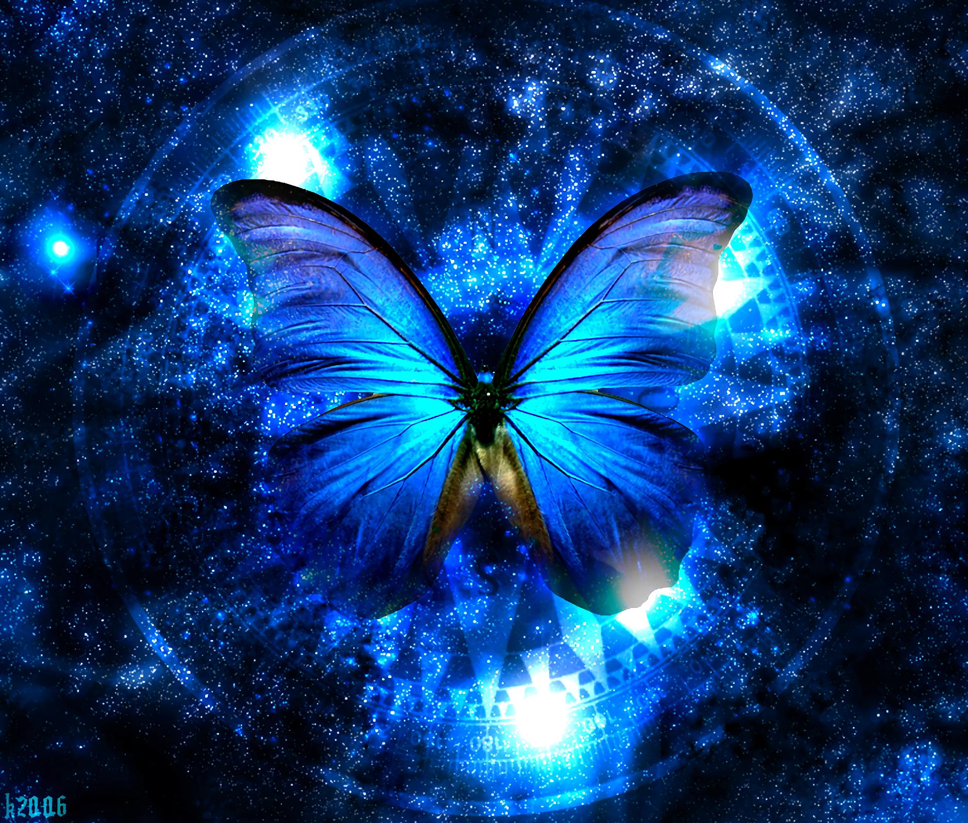 Blue Butterfly Fondo De Pantalla Hd Fondo De Escritorio
