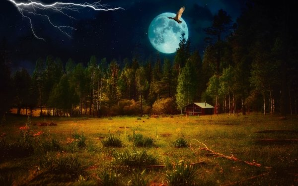 Artístico Fantasía Paisaje Noche Ave Luna Relámpago Cabaña Fondo de pantalla HD | Fondo de Escritorio
