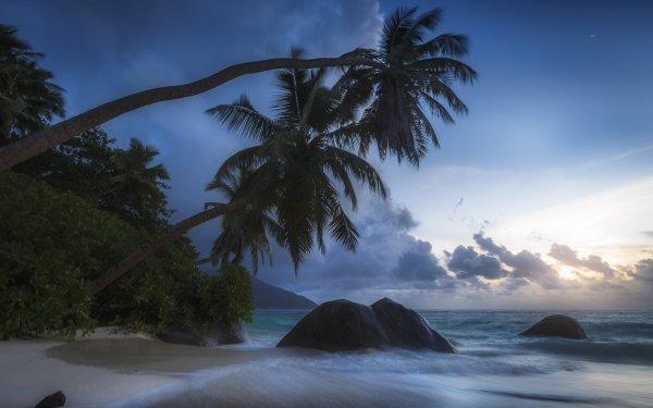 Tierra/Naturaleza Playa Nube Rock Seychelles Océano Sea Palmera Horizon Fondo de pantalla HD | Fondo de Escritorio
