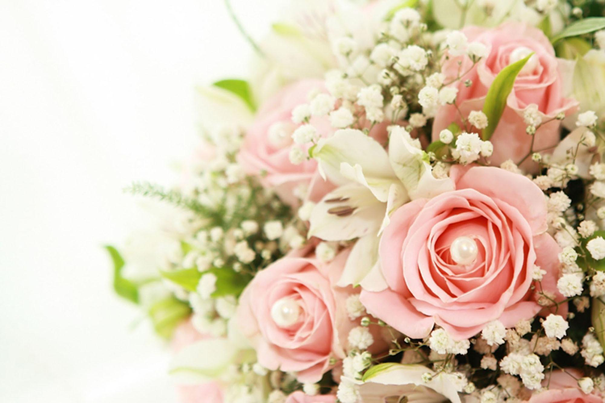 Roses And Baby S Breath Hd Wallpaper Background Image 2000x1332 Id 745775 Wallpaper Abyss