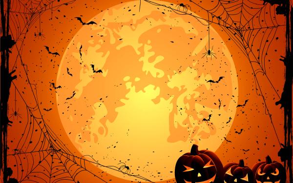 Helgdag Halloween orange Jack-O'-Lantern Spider Web Spider HD Wallpaper   Background Image