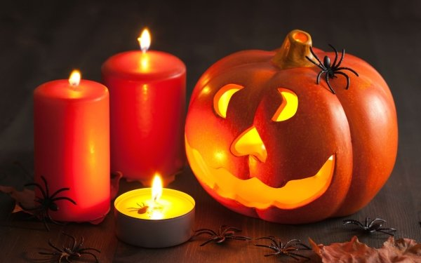 Vacances Halloween Jack-O'-Lantern Araignée Bougie Fond d'écran HD   Image