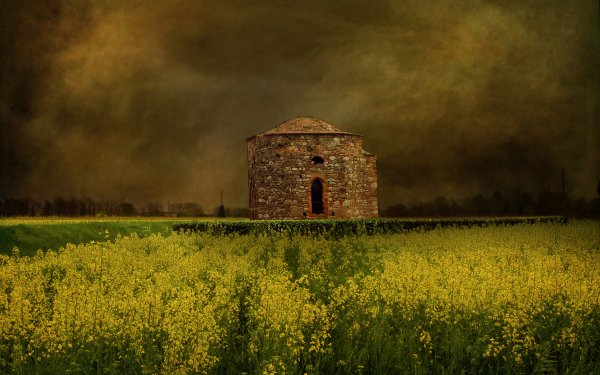 Man Made Building Buildings Brick Field Rapeseed HD Wallpaper   Background Image