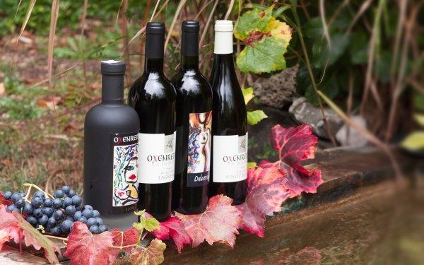 Food Wine Bottle Leaf Alcohol Grapes HD Wallpaper | Background Image