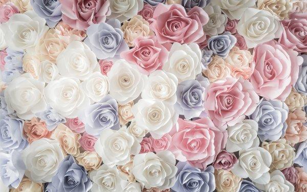 Earth Rose Flowers Flower White Flower Pink Flower Blue Flower HD Wallpaper | Background Image